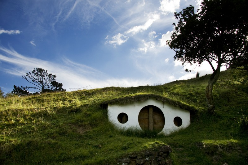 Biophilic Design - At One with Nature