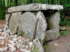 The dolmen at Craggaunowen