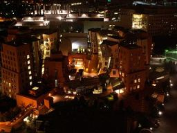 The Stata Center at night