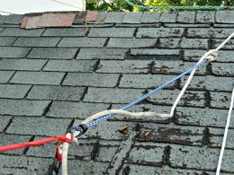 DIY Roofing Safety Strap - The red attaches to my shirt - The blue bungee gives me some spring