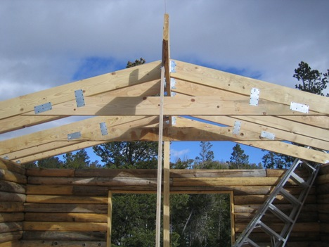 Log Cabin with rafters in place