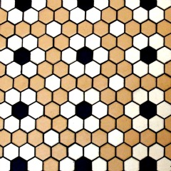 Flower Floor Tile Pattern - using hexagonal tiles - bathroom tile design ideas