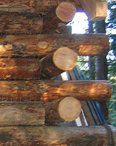 Butted Log Detail