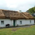 The medium-sized farm found at Muckross