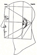 renaissance depiction of the proportions of a face