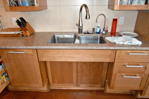An Accessible Kitchen Sink
