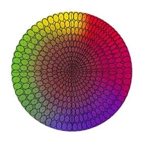 A 2D view of color as a series of ellipses