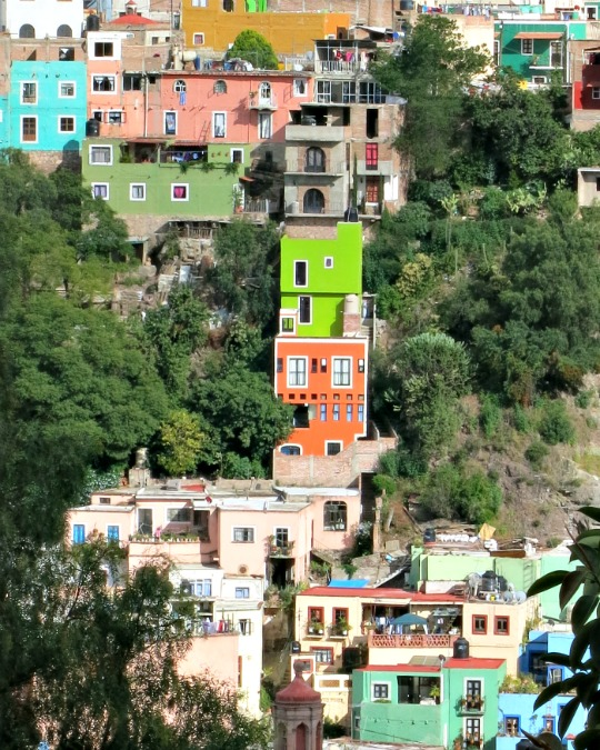 Colorful houses punctuate the hillside in Guanajuato City, Mexico