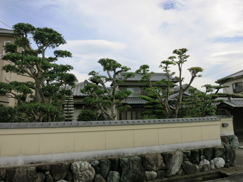 Walled gardens are part of the look in Japan.  It makes it difficult to get pictures of houses and makes the roads seem especially narrow.