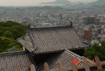 Japenese Roof from Above