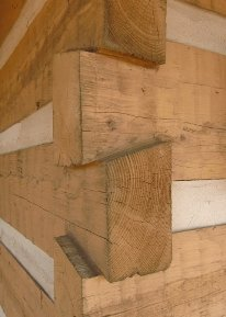 Notched Log Detail