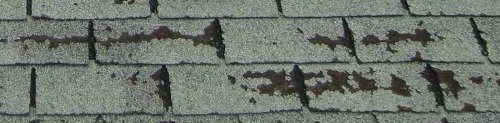 My roof's worn shingles - in need of a roof repair